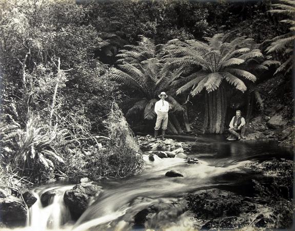 Nuovo Galles del Sud, Australia (1890-1908) © Archivi di Società Geografica Italiana