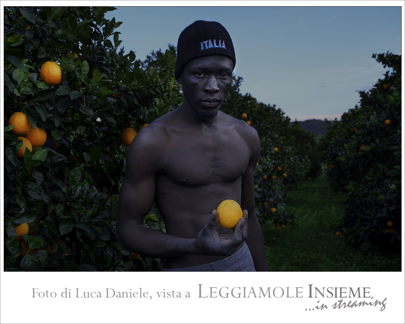 Luca_Daniele